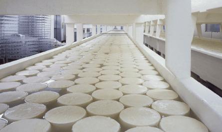GMP: дизайн и конструкция производства, хорошие практики